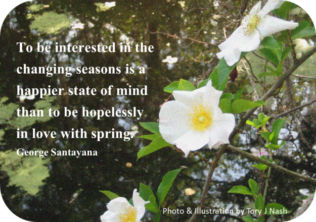 Hopelessly in love with spring